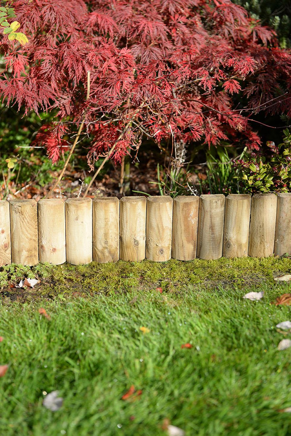 Border Section 23cm Forest Garden