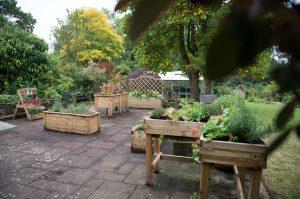 Forest Charitable Partners Garden