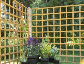 Forest Garden Trellis